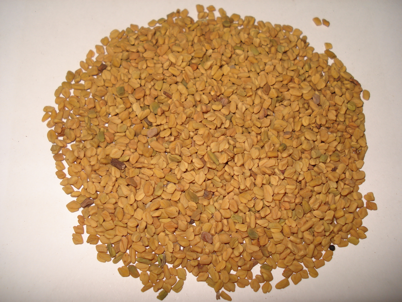 Fenugreek Seeds, Whole