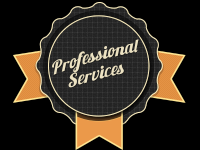 Our Professional Service
